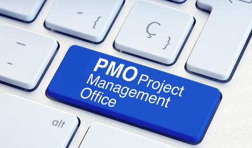 SAP導入PMO支援