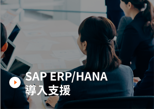SAP ERP/HANA導入支援